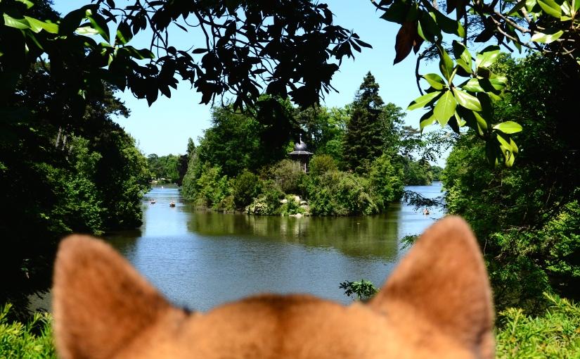 Bois de Boulogne – Un brin de nature aux portes deParis