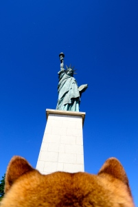 Paris liberty statue allee des cygnes shiba dog view