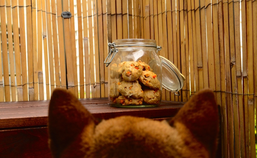 Recipe: Chicken-carrot cookies for yourdog