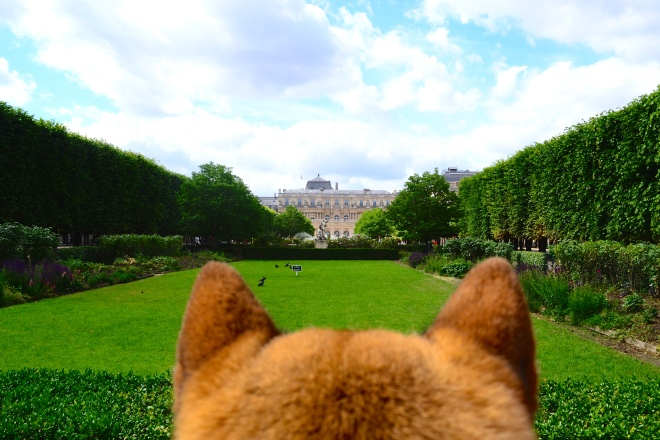 The Palais Royal Garden in a dog perspective dog friendly