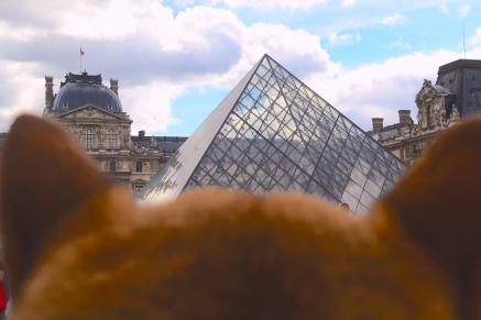 La pyramide du louvre dans les yeux d'un chien #dogperspective