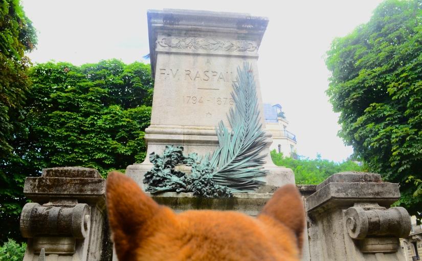 Le Caniparc Denfert Rochereau – Le seul caniparc de Parisintra-muros