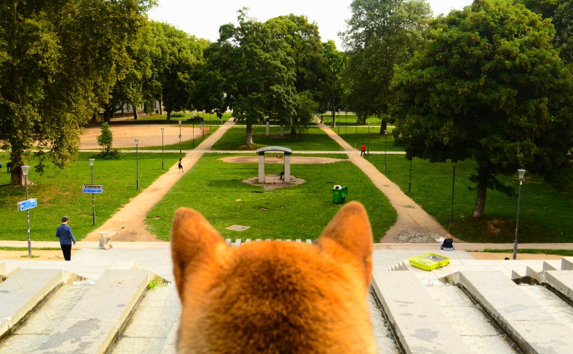 The Parc de Bercy – A perfect spot to let your dog unwind himself in the center