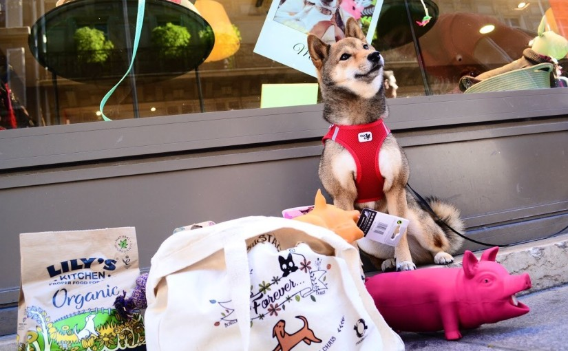 The best shopping adresses of the center of Paris to Spoil your dog