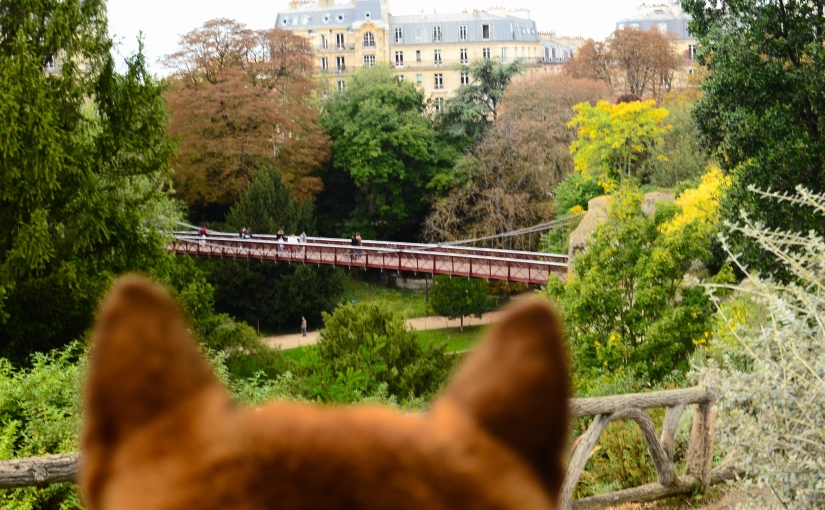 Buttes Chaumont: Let your dog travel between nature and parisian life