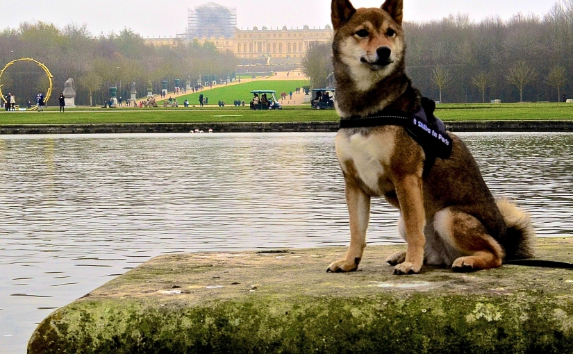 The Versailles palace park – An amazing historical walk with your dog